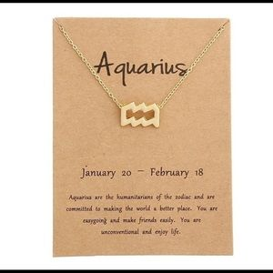 Aquarius Horoscope Necklace Adjustable